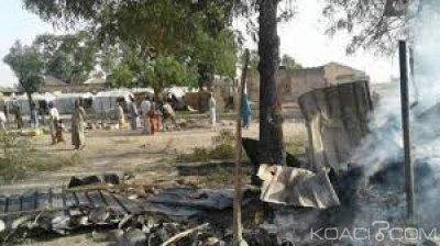 Nigeria: Au moins 30 villageois abattus par Boko Haram dans l'Etat d'Adamawa