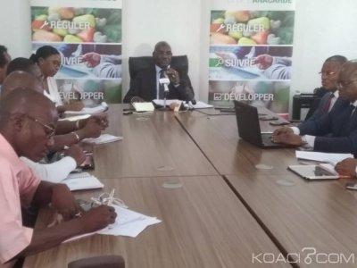 Côte d'Ivoire : Filière Anacarde, Adama Coulibaly martèle  «il est normal qu'à un moment donné la filière cajou contribue au budget de la nation »
