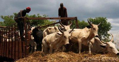 Côte d'Ivoire : Activités du PSGouv, la mobilisation des financements évaluée à 359,1 milliards de FCFA à la fin mars 2019