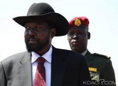 Soudan du Sud : L'ONU prolonge d'un an l'embargo sur les armes , une « mesure contre la paix » , selon le gouvernement