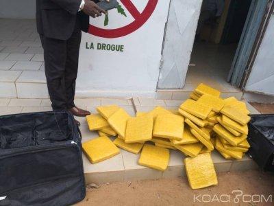 Côte d'Ivoire : À Gagnoa, deux vendeuses de drogues interpellées avec 59 kilogrammes de cannabis