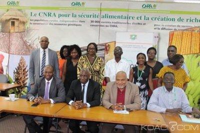 Côte d'Ivoire : Lutte contre la Pauvreté, le PNDC et le CNRA ensemble pour la réussite de la composante « Accès à la microfinance du PRPC-DC »