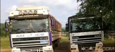 Côte d'Ivoire: Tabou, saisie de 3 camions d'orpailleurs clandestins, plus de 5 millions proposés à des agents des Eaux et Forêts pour les corrompre