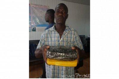Côte d'Ivoire: Le redoutable dealer nigérien Malick Alimou interpellé à Attécoubé