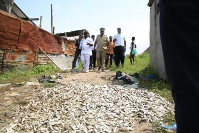 Côte d'Ivoire: Affaire poissons retrouvés morts à Coubé, aucun risque, il s'agit simplement d'un vol de poissons par une pêche illégale.