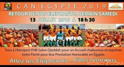 Côte d'Ivoire: Accueil triomphal des éléphants, le gouvernement dit non !