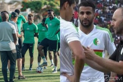 Nigeria-Algérie : CAN 2019, veille de demi-finale, les arbitres désignés et historique