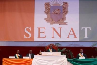 Côte d'Ivoire: Depuis Yamoussoukro, les sénateurs PDCI-RDA de la CRSTE demandent à Ouattara de mettre fin au «recours systématique aux ordonnances»