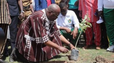 Burkina Faso: Environ 200.000 plants à mettre en terre au cours d'une journée de reforestation