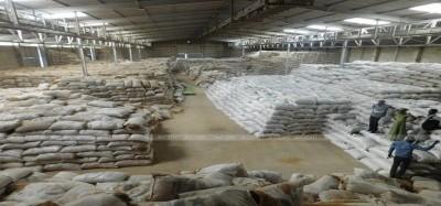 Cameroun: Le Japon s'engage à équiper les riziculteurs camerounais à hauteur d'1 milliard FCFA