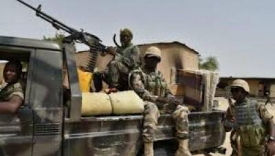 Niger:12 villageois abattus dans une attaque attribuée à Boko Haram  à Gueskérou