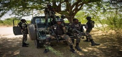 Cameroun : Trois civils tués dont un bébé et une femme enceinte, l'armée accuse les sécessionnistes