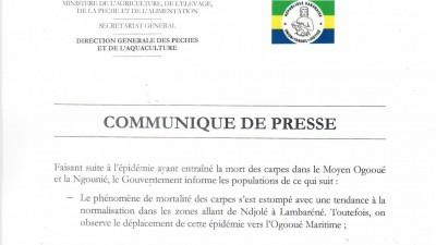 Gabon: Levée de la suspension de la pêche et de la commercialisation de la carpe