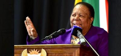 Afrique du Sud : La diplomatie lie les cause des violences xénophobes à l'afrophobie