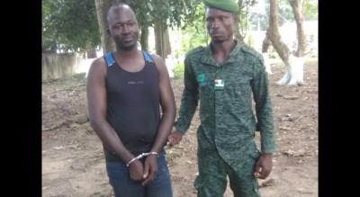 Côte d'Ivoire: Forêt classée de Yaya, le cerveau «des vendeurs » de parcelles appréhendés par l'Unité de gestion forestière de Kossandji