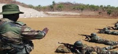 Cameroun: Au moins cinq militaires tués dans une nouvelle attaque surprise de Boko Ha...