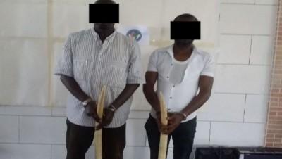 Côte d'Ivoire: Deux présumés trafiquants majeurs opérant dans le trafic illégal de l'...