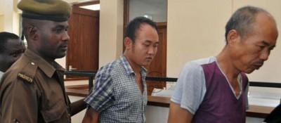 Malawi:  Deux chinois condamnés pour une affaire de trafic de cornes de rhinocéros et de défenses d' éléphants