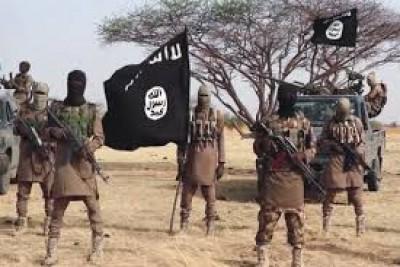 Nigeria : Cinq miliciens antijihadistes abattus par des combattants de l' ISWAP à Gubio