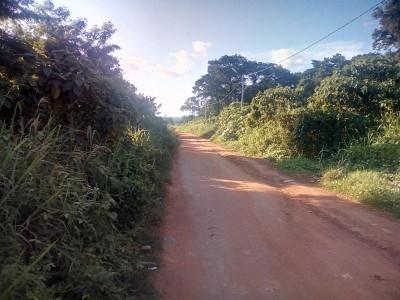 Côte d'Ivoire: Adhésion au RHDP d'une section,  le fédéral FPI Béoumi révèle, « Afoto...