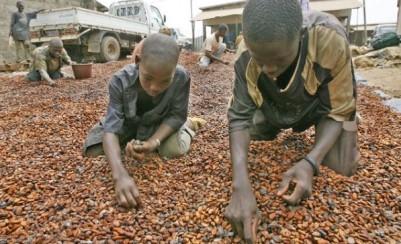 Côte d'Ivoire: Travail d'enfants dans les plantations, des équipes de douanes américaines sur le terrain