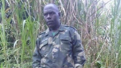 RDC: L'armée annonce la mort d'un nouveau chef  du groupe  hutus rwandais FDLR