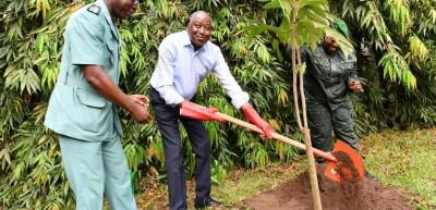 Côte d'Ivoire: Opération « Un jour, un million d'arbres », après Ouattara, Gon plante...