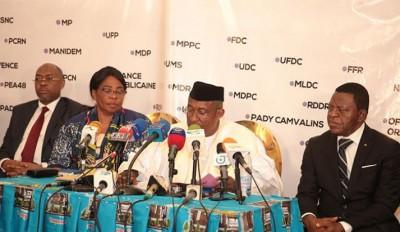 Cameroun: Elecam publie les listes de candidatures provisoires retenues pour les élec...