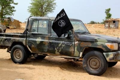 Nigeria: Des combattants de l'ISWAP bloquent un axe routier à Gasarwa et tuent six personnes