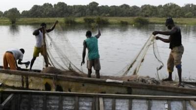 Cameroun: Une cinquantaine de pêcheurs massacrés par les terroristes de Boko Haram