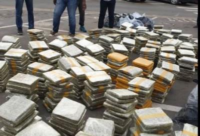 Côte d'Ivoire : 1005 Kg de cannabis saisis sous le couvre-feu à Abobo et Grand-Bassam