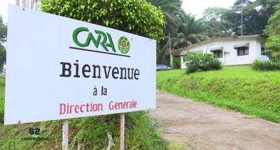 Côte d'Ivoire : En plein couvre-feu, le CNRA attaqué dans la nuit de samedi par des individus fortement armés qui ont emporté le coffre-fort