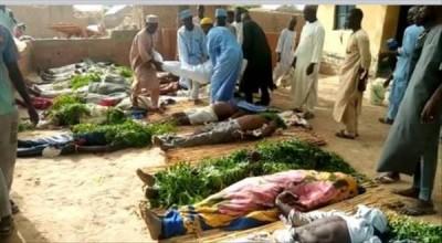 Nigeria : 60 villageois tués par balles par des bandits armés dans l'Etat de Sokoto