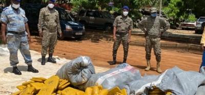 Togo :  Une voiture de bananes chargée de cannabis échoue à Tchalo