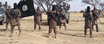 Cameroun : 22 civils dont des enfants enlevés par Boko Haram à l'Extrême-Nord
