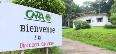 Côte d'Ivoire : Affaire Abadjin-Doumé et  CNRA : Tentative de spoliation de terres, forfaiture ou abus de pouvoir de pouvoir ?