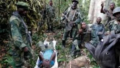 RDC : Sept soldats trouvent la mort dans une embuscade des ADF dans le parc de Virunga