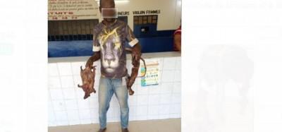 Côte d'Ivoire : Interpellation à Abobo de 2 individus, l'un voleur présumé de viande de brousse et l'autre porteur de drogue