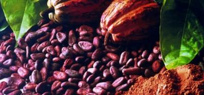 Ghana - Côte d'Ivoire :  Accord sur la hausse du prix du cacao