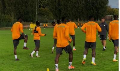 Côte d'Ivoire : Avant les amicaux contre la Belgique et le Japon, les éléphants en regroupement à Bruxelles