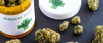 Rwanda : Feu vert du gouvernement pour la production du cannabis à usage thérapeutiqu...