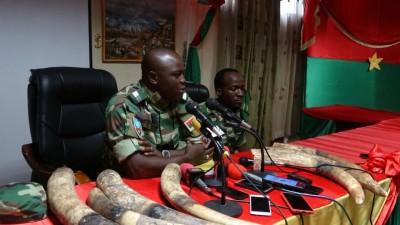Burkina Faso : 32 kilogrammes de pointe d'ivoire saisis par des forestiers