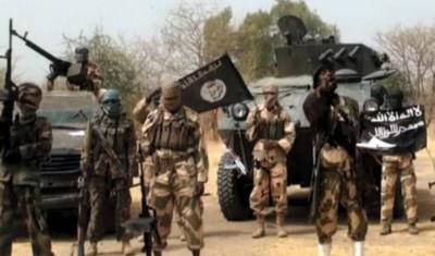 Nigeria : Huit agriculteurs décapités dans leurs champs par Boko Haram