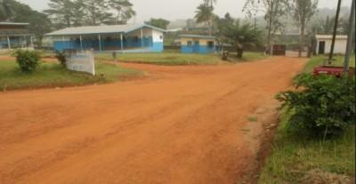 Côte d'Ivoire : Le corps sans vie d'un homme découvert à Bonoua