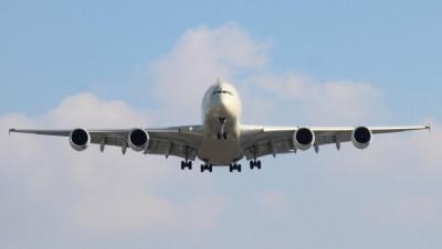 Soudan : Un chat « en colère » oblige un avion à atterrir d'urgence