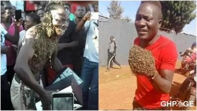 Kenya : Deux voleurs arrêtés par des abeilles et contraints de rendre leur butin
