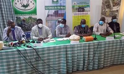 Burkina Faso : Le prix d'achat plancher du coton graine fixé à 270 FCFA/kg