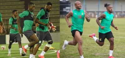 Ghana-Côte d'Ivoire :  Match amical, duel entre Black Stars et Eléphants ce samedi à...