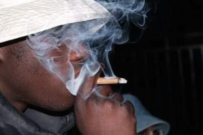Cameroun : La consommation des drogues explose, 60% des jeunes concernés