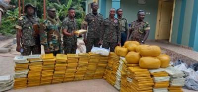 Ghana :  Saisie à Wli Todzi de cannabis en route vers le Togo